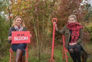 bloom-stays-kent