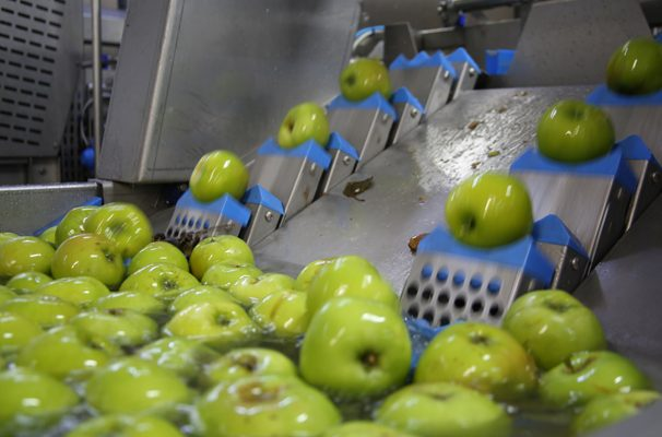 Kent Fruit Specialist Cultivates Growth Plans With HSBC UK Support